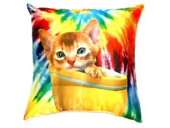 Zara terez pillow Update Your Space with These Totally Awesome Pillows