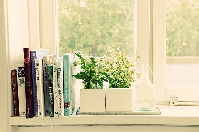 Herb garden // www.brokeandchic.com