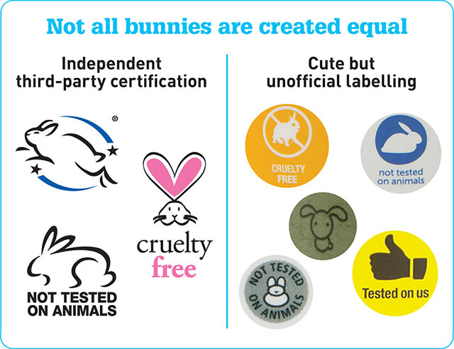 cruelty-free makeup guides!