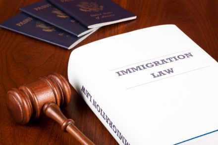 Basic Information on US Immigration Laws