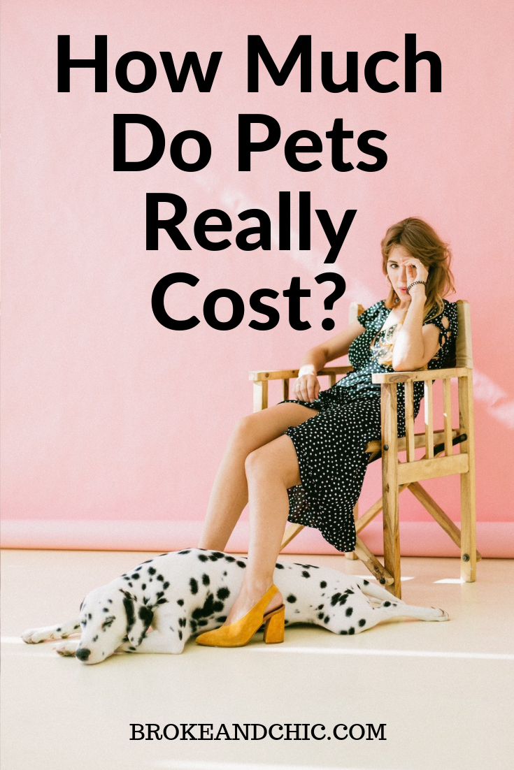 How Much Do Pets Really Cost?