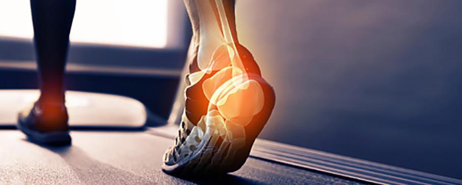 back of heel pain in foot