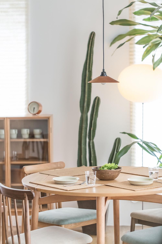 cactus in dining room decor