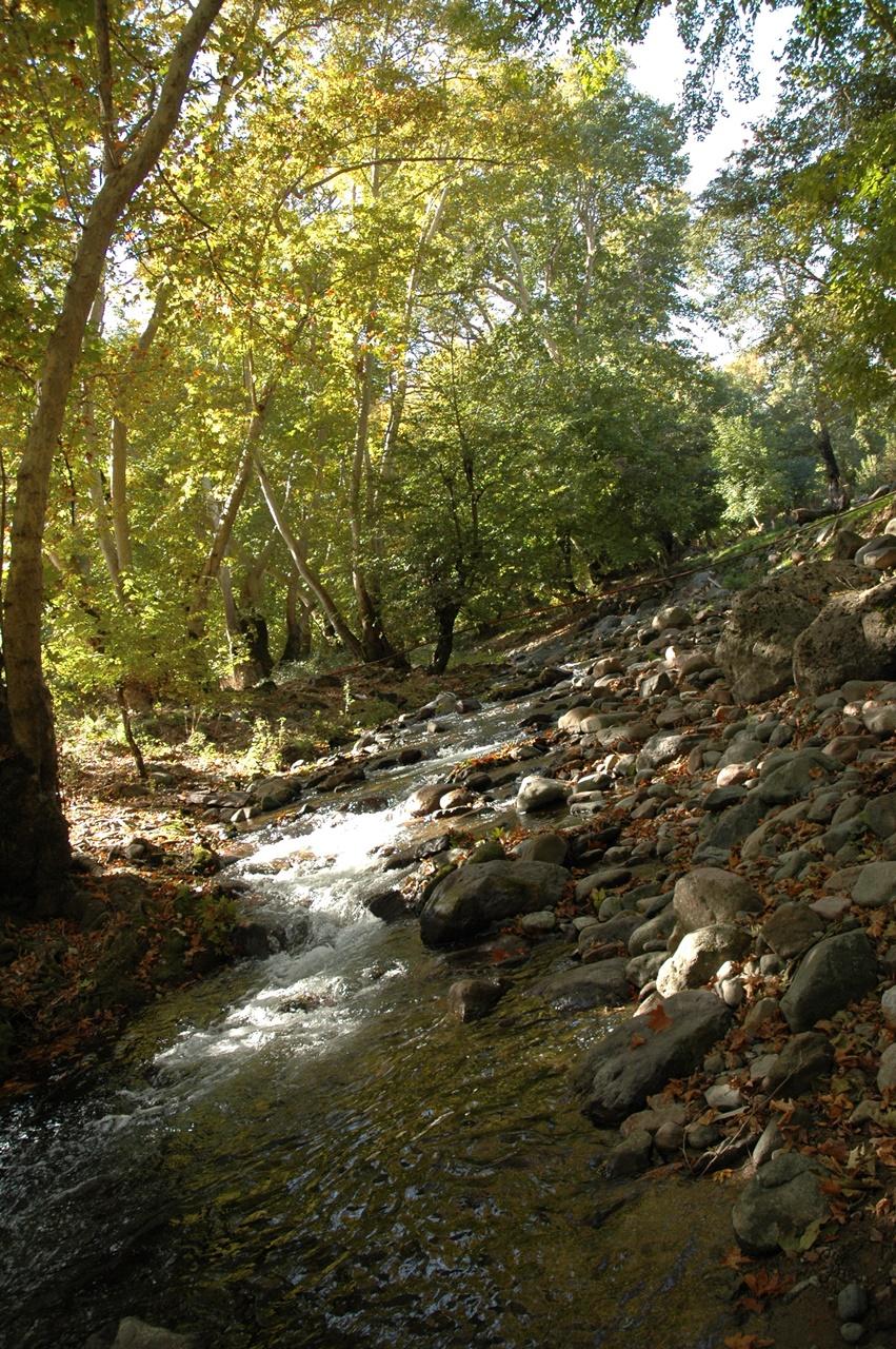 Shikahogh Reserve Armenia