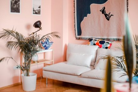 Pink walls in living room