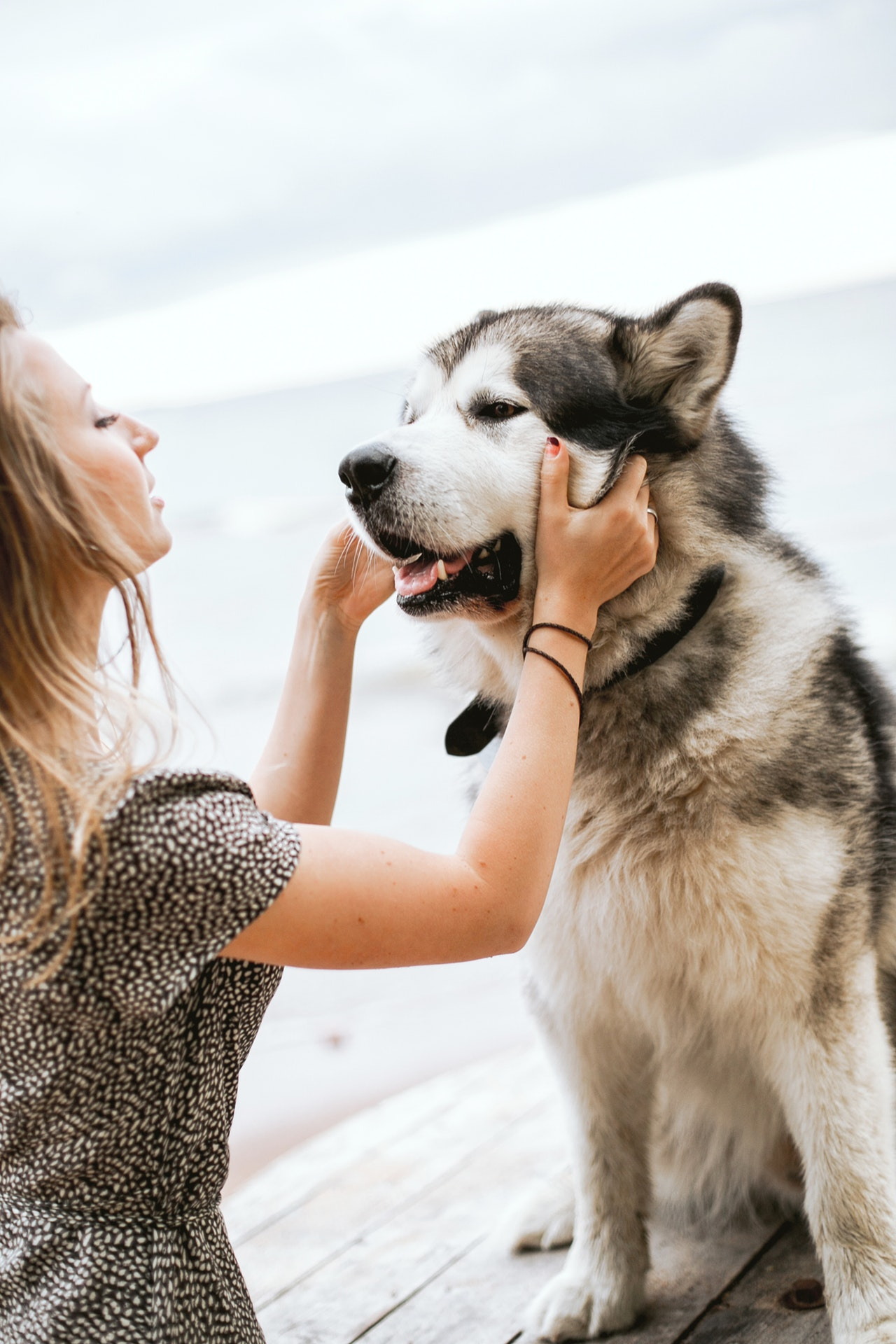Woman with her husky