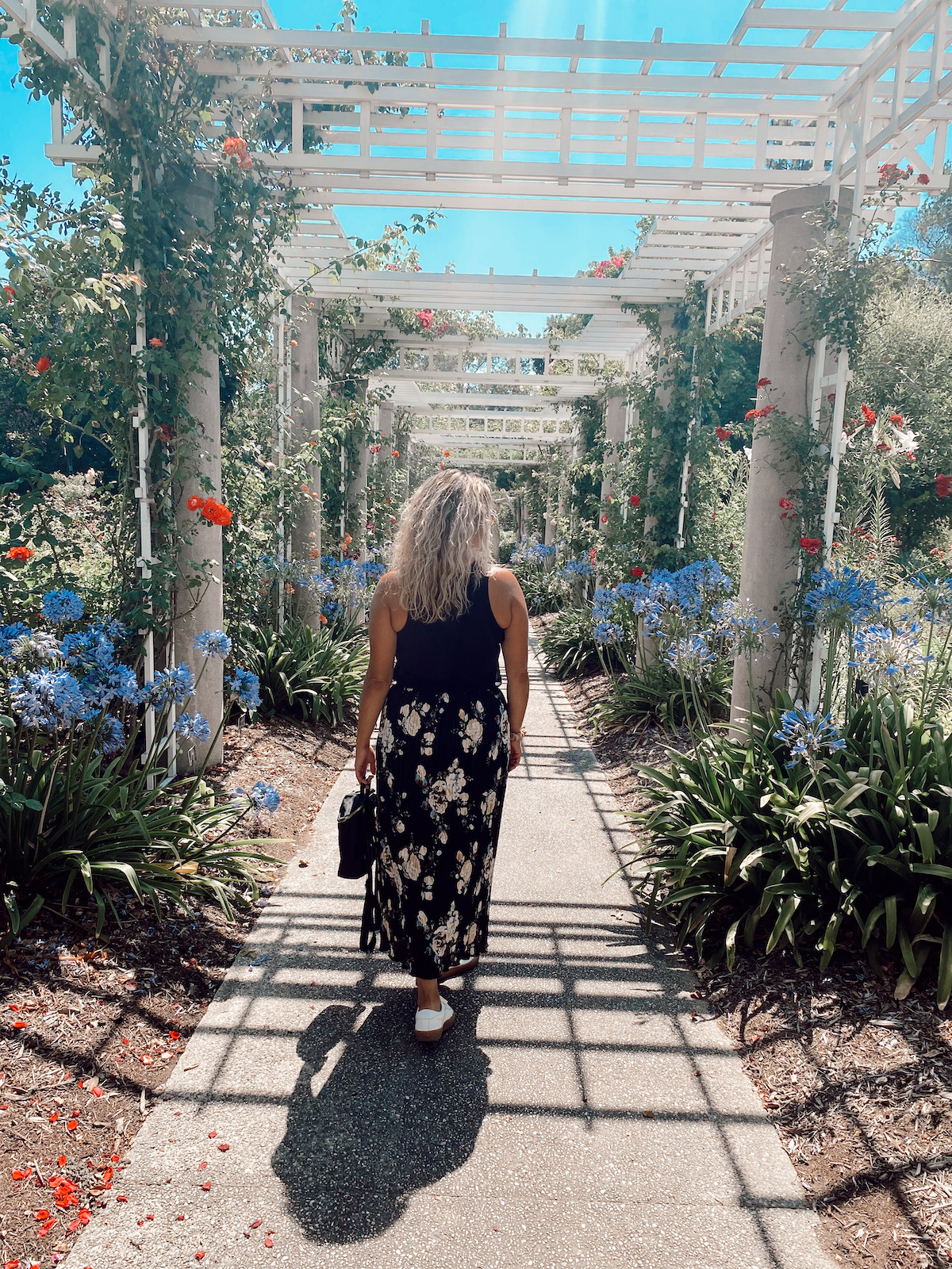 walking through Huntington Garden and Library in Los Angeles