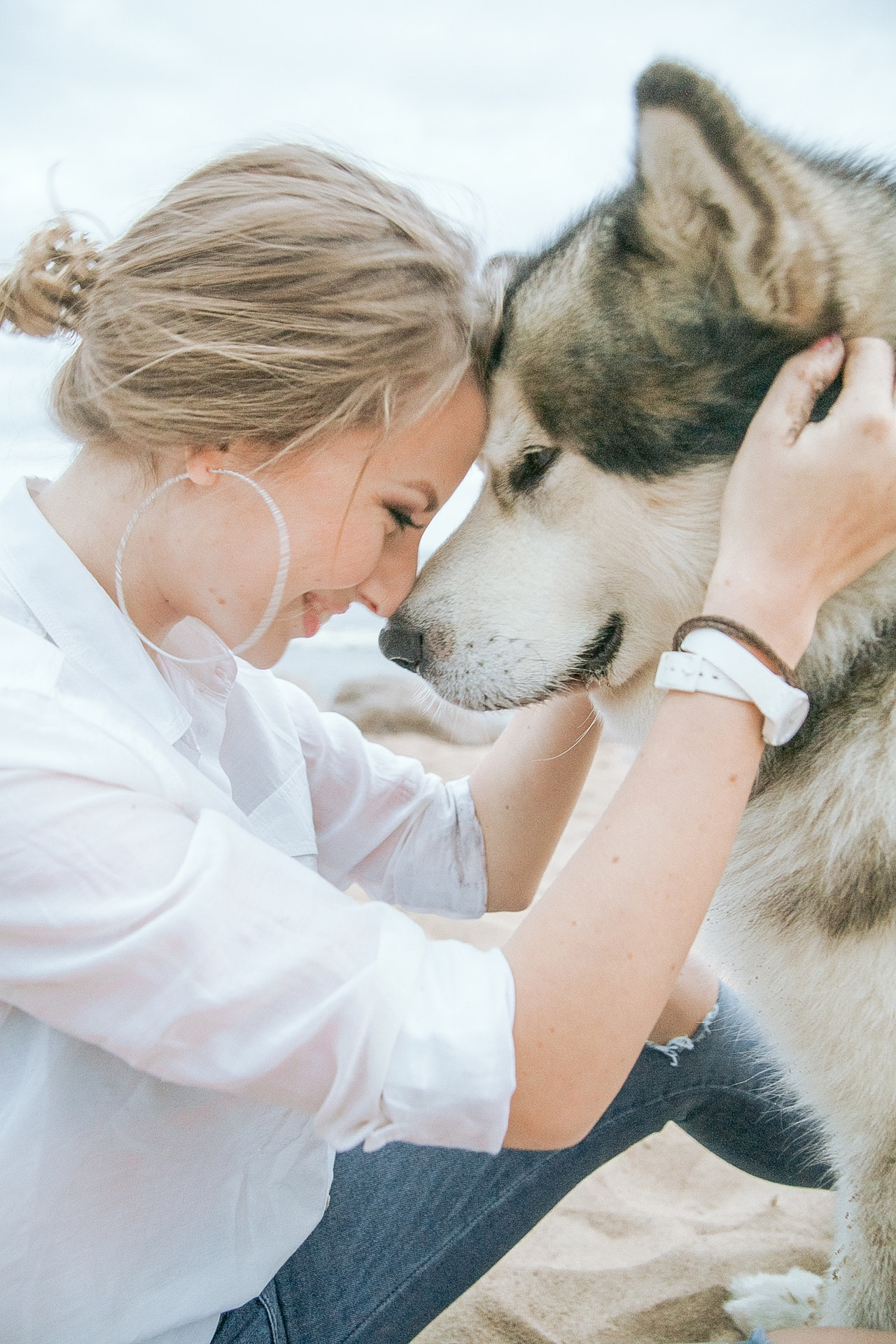 Husky dog and owner