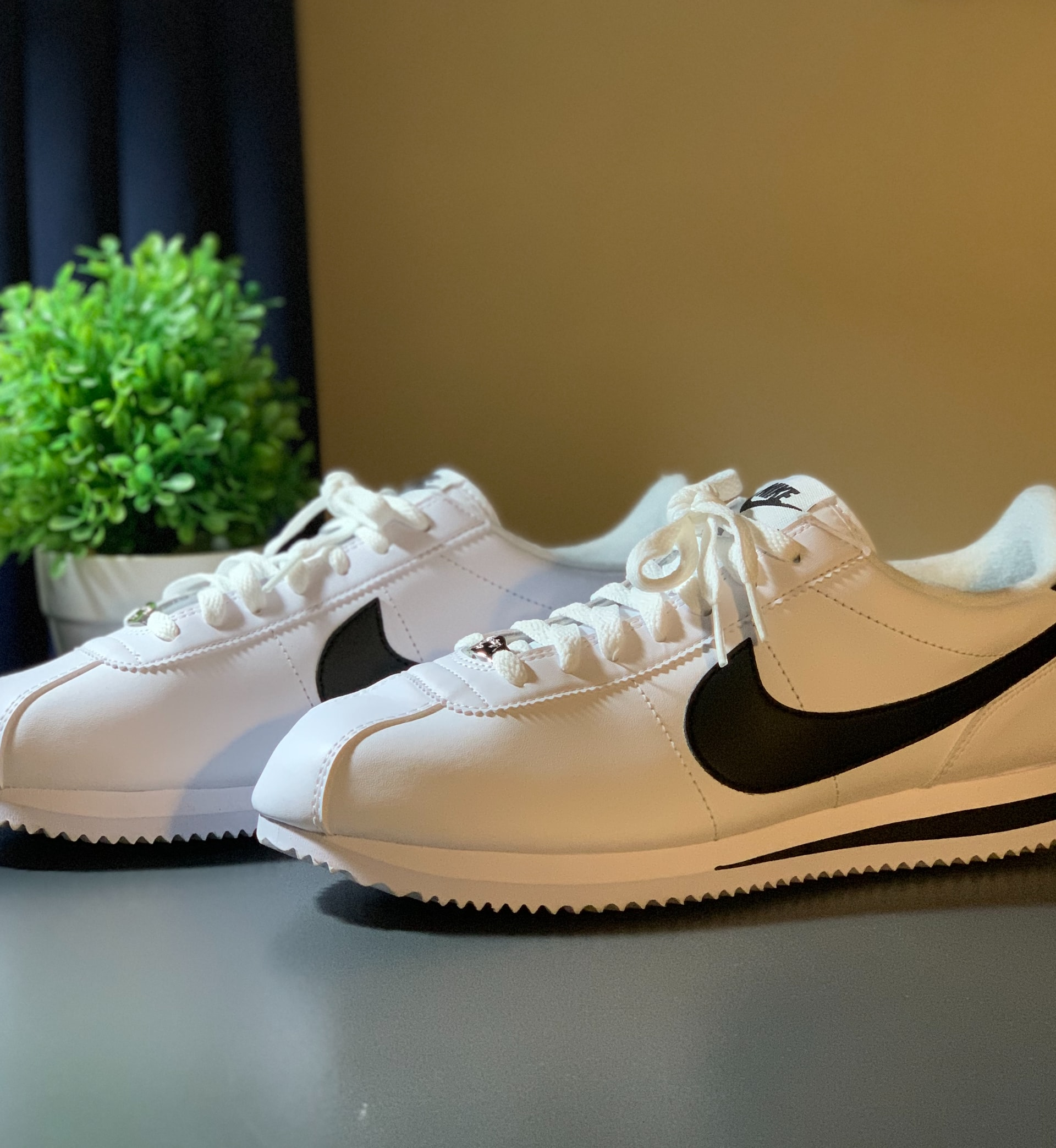 retro Nike sneakers