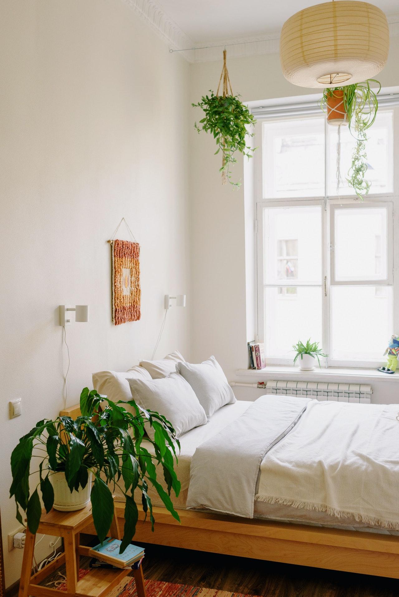 bedroom decor with plants