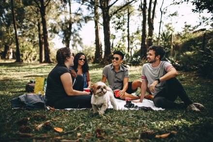 college students having a picnic