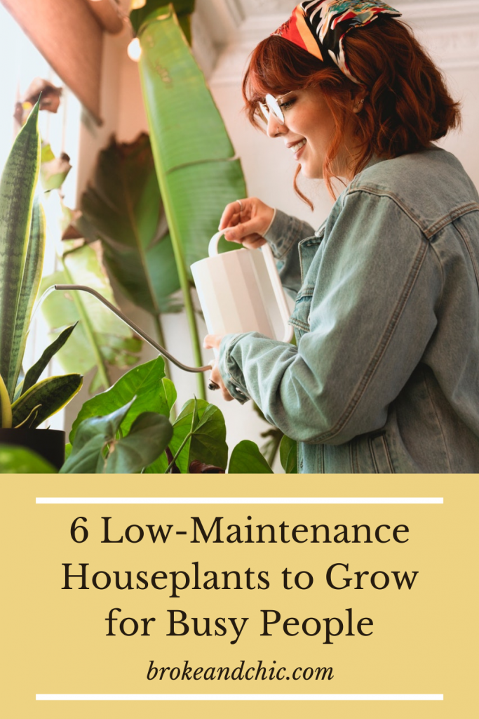 Woman with red hair watering plants in her home.