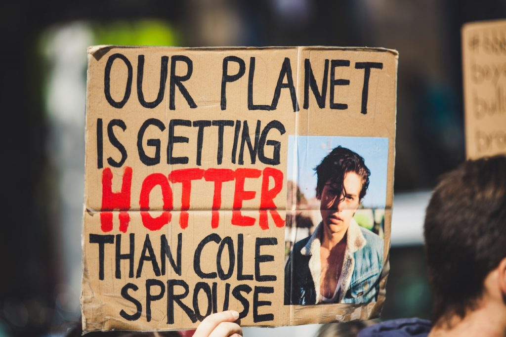 Protest signs that reads: Our Planet Is Getting Hotter Than Cole Sprouse