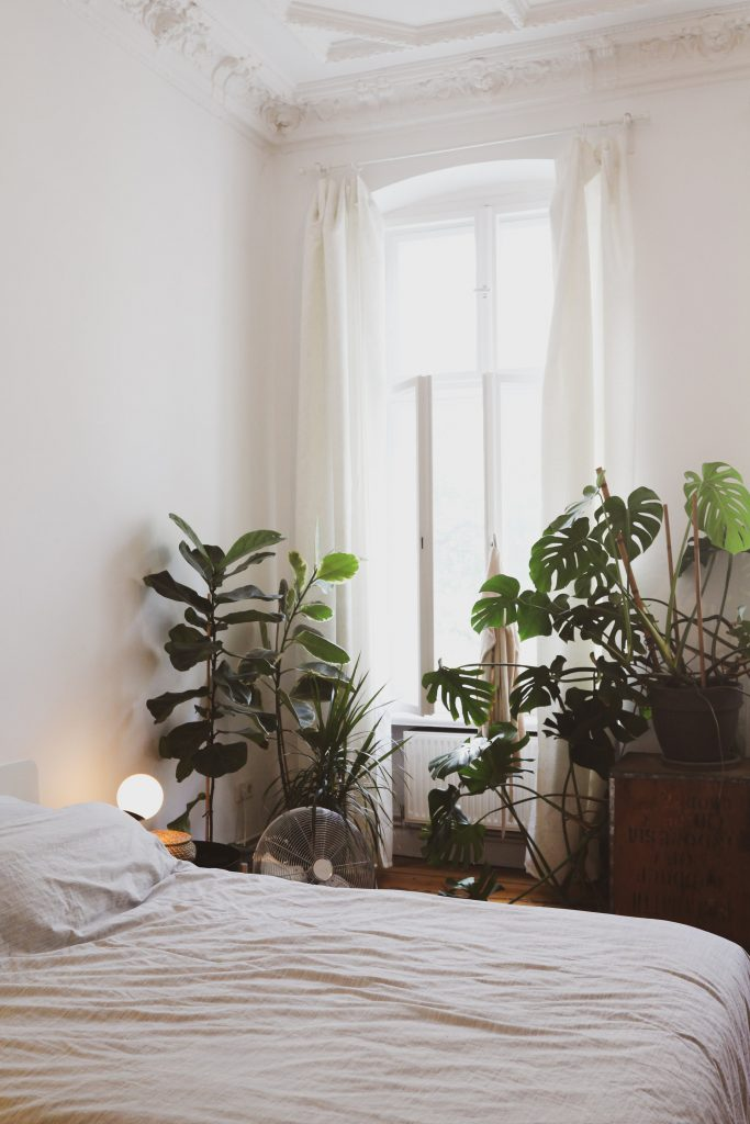 A large quantity of plants in a large loft bedroom.